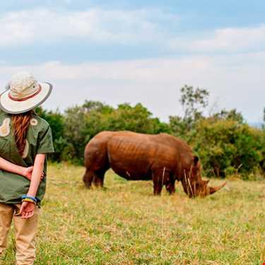 Kenya'da Safari Turu 2018