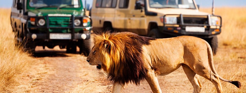 Kenya'da Safari & Zanzibar'da Deniz Turu (22-28 Ekim 2019)